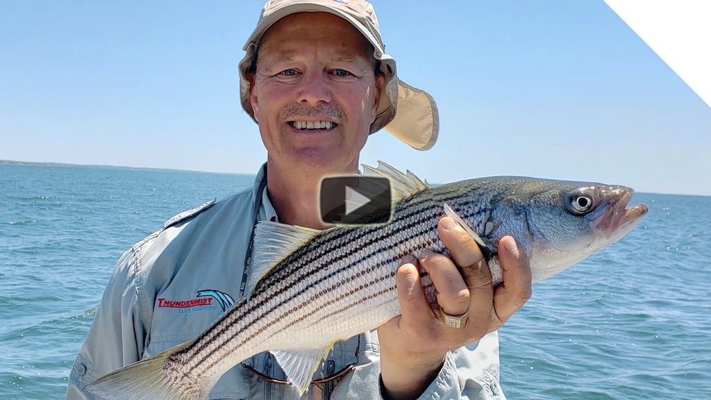Jerkbait Schoolie Stripers - Amazing fish after fish action!