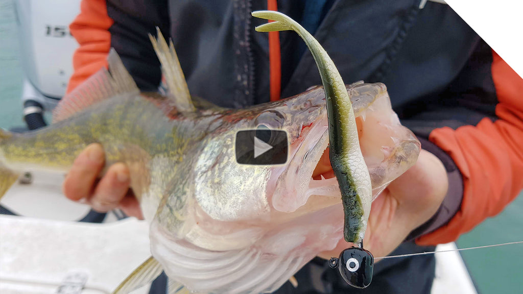 Walleye Fishing Tips: The Walleye Flex!