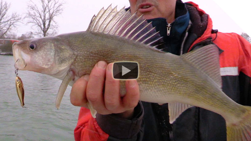 New Lure Sneak Peek! Walleye on the new Peanut Bunker