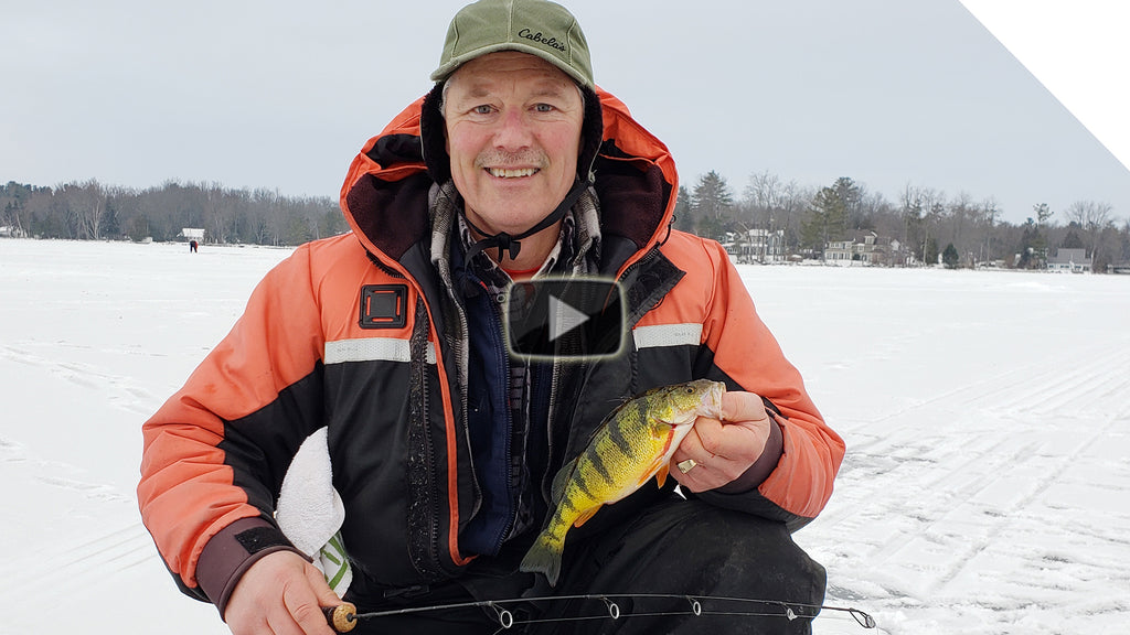 Ice fishing for perch on Cook's Bay, Lake Simcoe