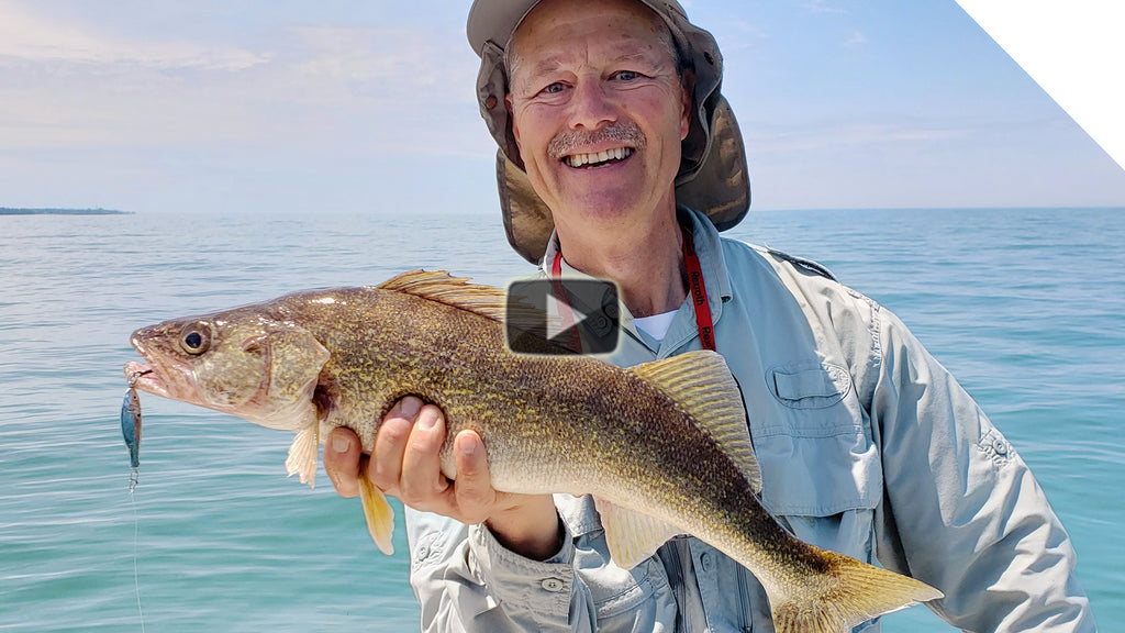 "Walleye and Bass getting ""stung"""