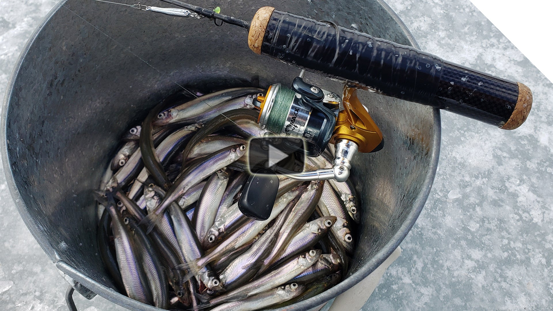 Ice Fishing For Smelts - Jigging Tips for Catching Smelts