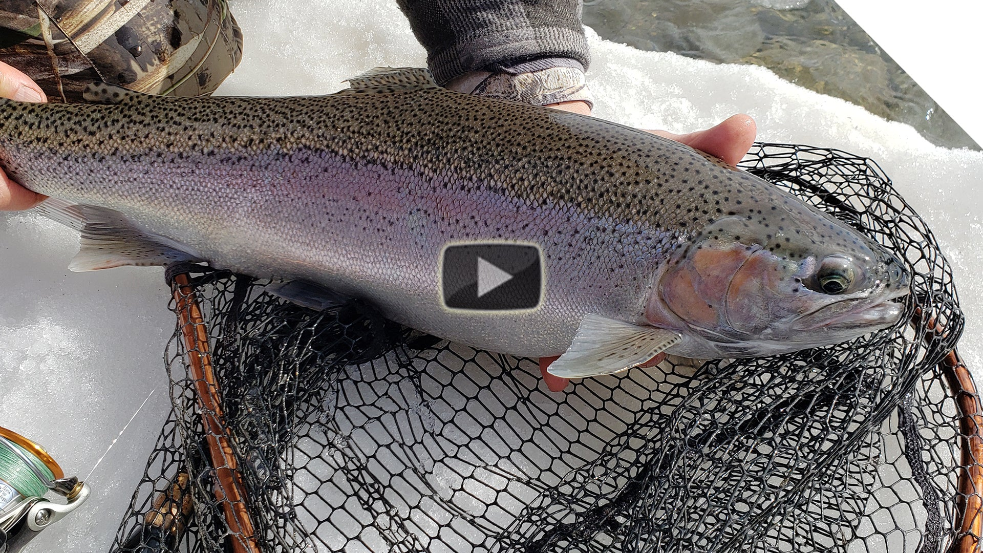 Winter Steelhead - bead bouncing