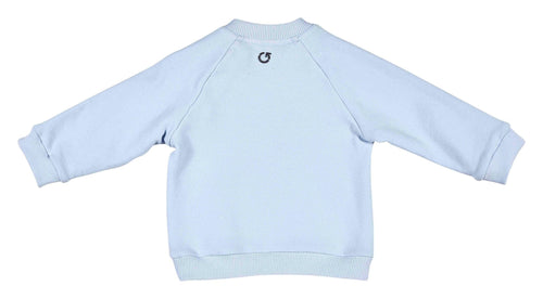 Pale Blue Jumper - 352-8610-20