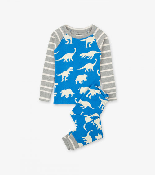 Roaming Dinos Organic Cotton Raglan Pajama Set