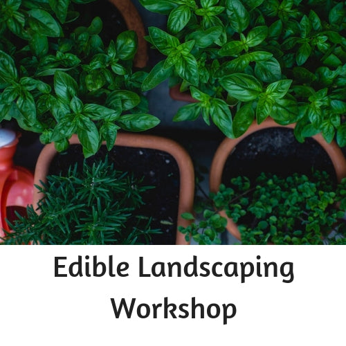 Organic Edible Landscaping Workshop - Oct 20th 10AM