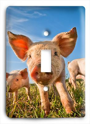 Baby Piglets Light Switch - Colorful Switches