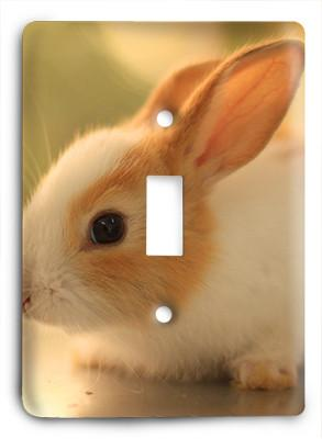 Bunny Rabit Love Light Switch - Colorful Switches