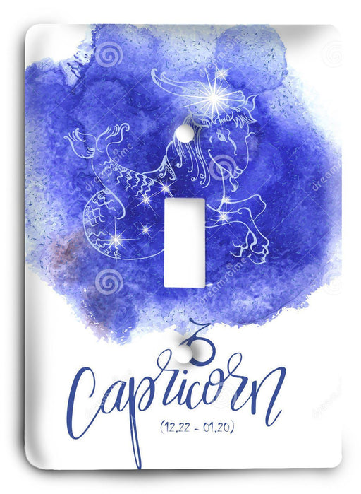 Capricorn  v06 Light Switch Cover - Colorful Switches