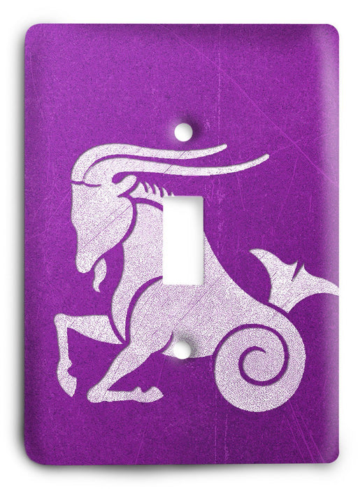 Capricorn  v13 Light Switch Cover - Colorful Switches