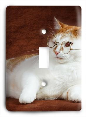 Cat In Glasses v16 Light Switch - Colorful Switches
