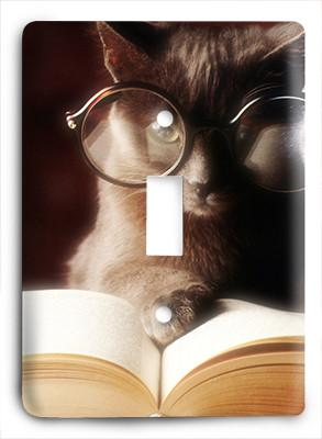 Cat In Glasses v8 Light Switch - Colorful Switches