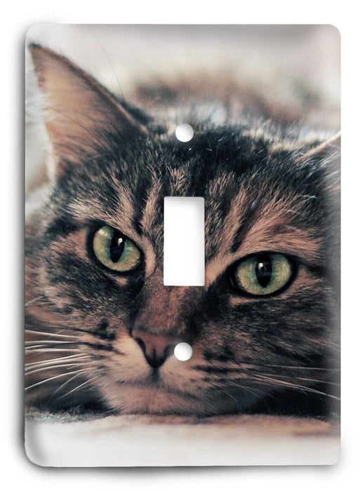 Cat Love G5v3 Light Switch Cover - Colorful Switches