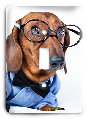 Dog In Glasses v17 Light Switch - Colorful Switches