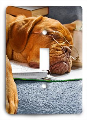 Dog In Glasses v20 Light Switch - Colorful Switches