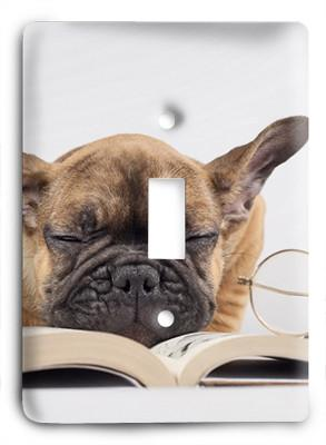 Dog In Glasses v2 Light Switch - Colorful Switches