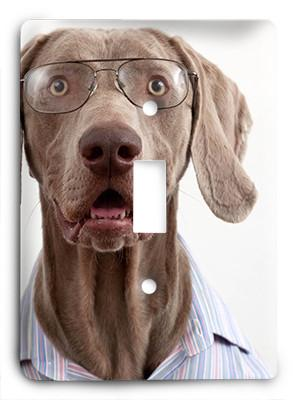Dog In Glasses v9 Light Switch - Colorful Switches