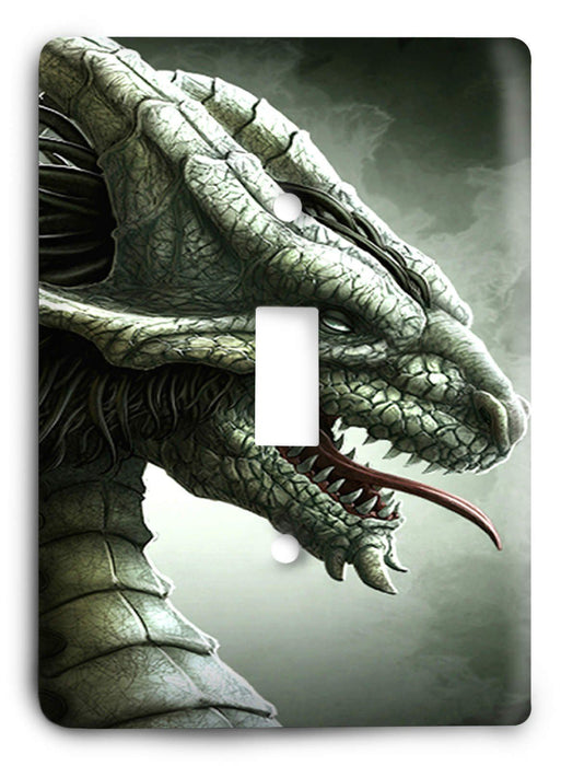 Dragon G5v22 Light Switch Cover - Colorful Switches