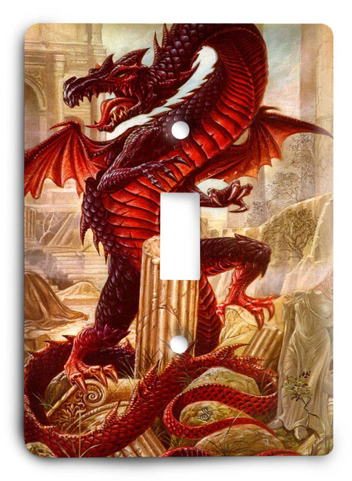 Dragon G5v9 Light Switch Cover - Colorful Switches