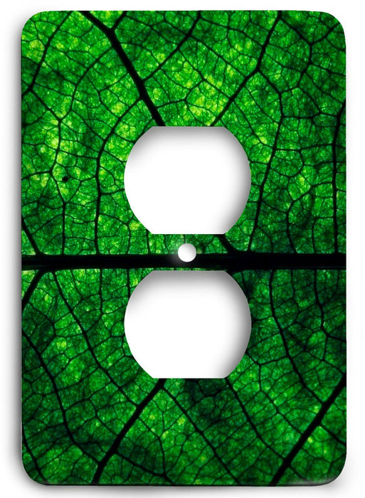 Green Textures Design v16  Outlet Cover - Colorful Switches