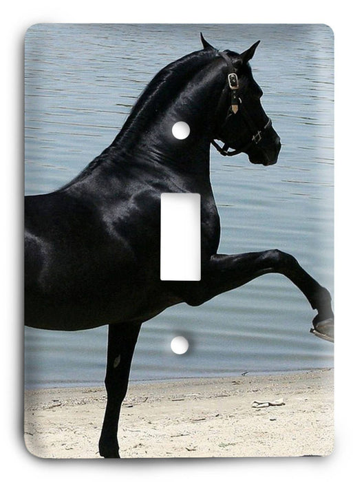 Horse Breed G5v15 Light Switch Cover - Colorful Switches