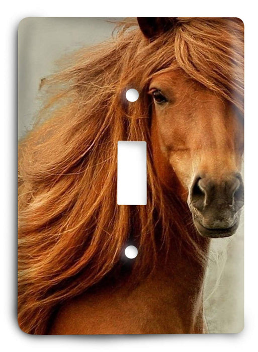 Horse Breed G5v17 Light Switch Cover - Colorful Switches