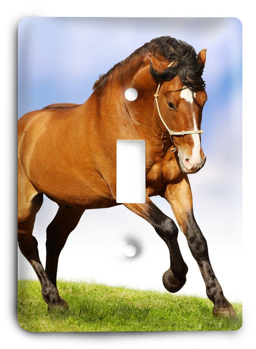 Horse Breed G5v36 Light Switch Cover - Colorful Switches