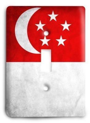 Singapore Light Switch Cover - Colorful Switches