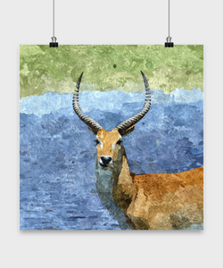 Wild animal posters - Oil Painting style print - - Uncle Seal