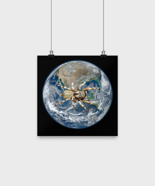 Spider takes over the world - Poster - Uncle Seal