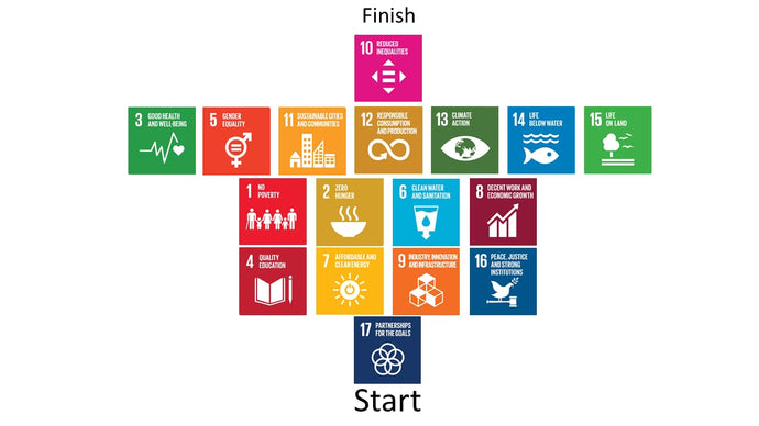 The SDG and United Nations Day