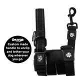 Stop & Go Shock Absorbing Bungee Dog Leash - Black