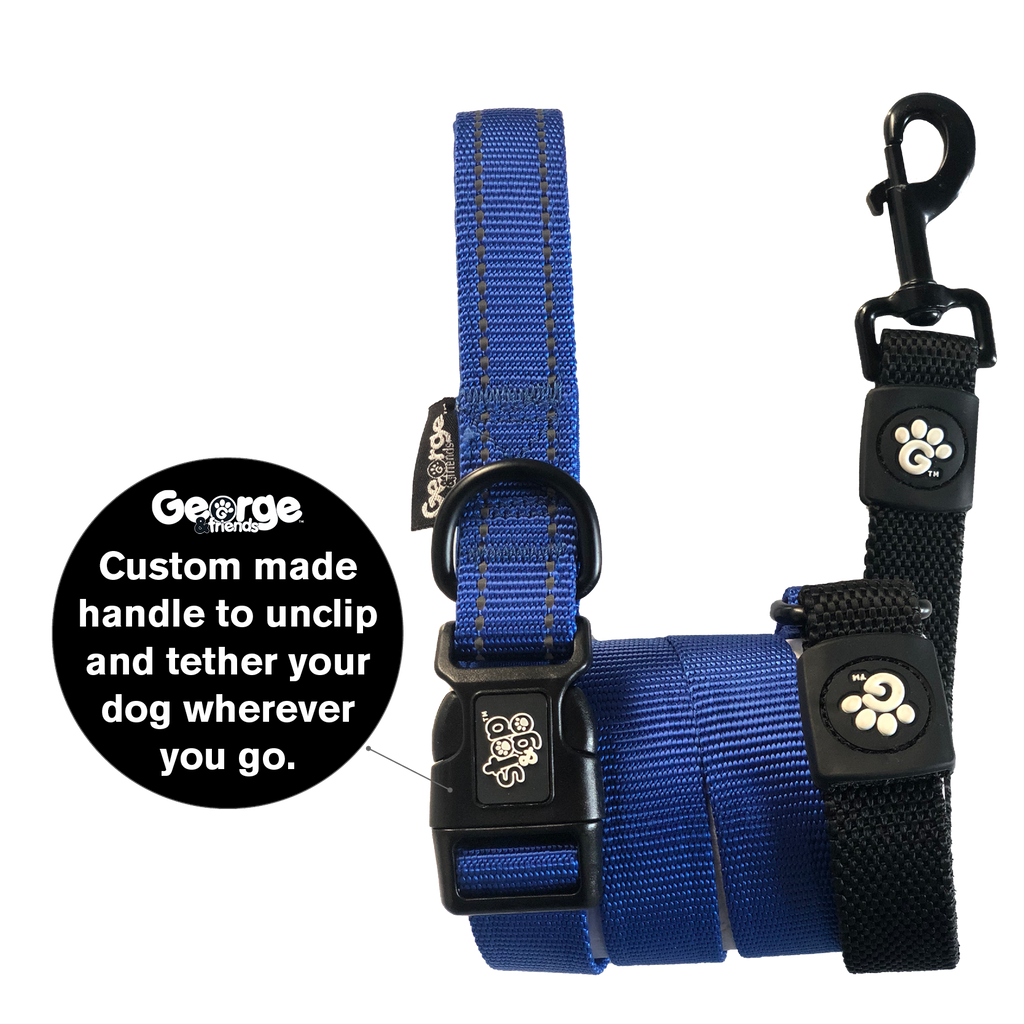 Stop & Go Shock Absorbing Bungee Dog Leash - Blue