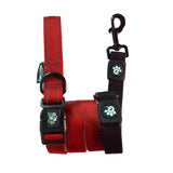 George & Friends Stop & Go Shock Absorbing Bungee Dog Leash - Red, Leash, George & Friends - George & Friends