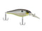 Berkley Bad Shad Crankbait-Crankbait-TackleFreaks.com