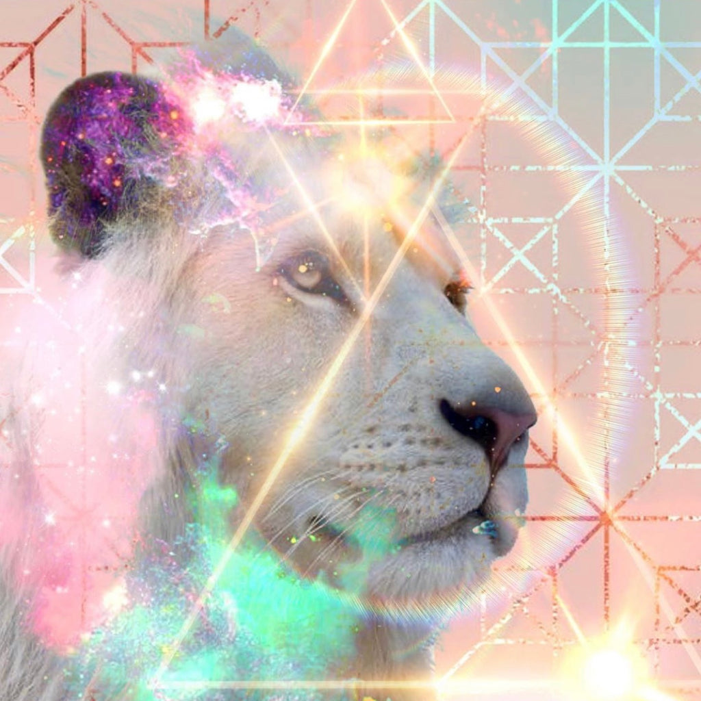 Moon Musings: How The New Moon in Leo (Aug 18, 2020) Will Affect Your Zodiac Sign