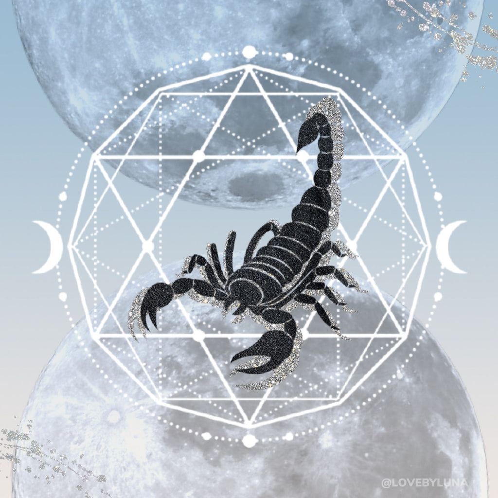 Moon Musings: How The New Moon in Scorpio (Nov. 15, 2020) Will Affect Your Zodiac Sign