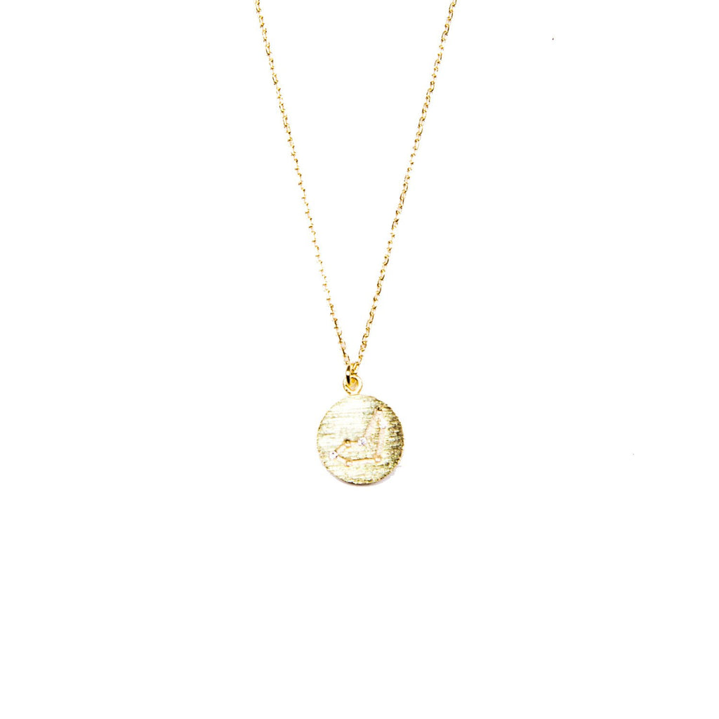 Capricorn Coin Necklace