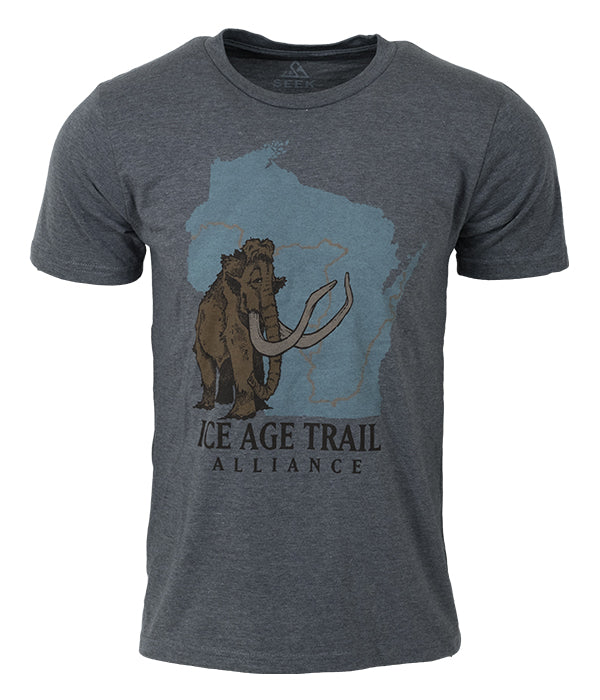 "Mens Ice Age Trail outdoor artist series organic ""core logo"" t-shirt grey"