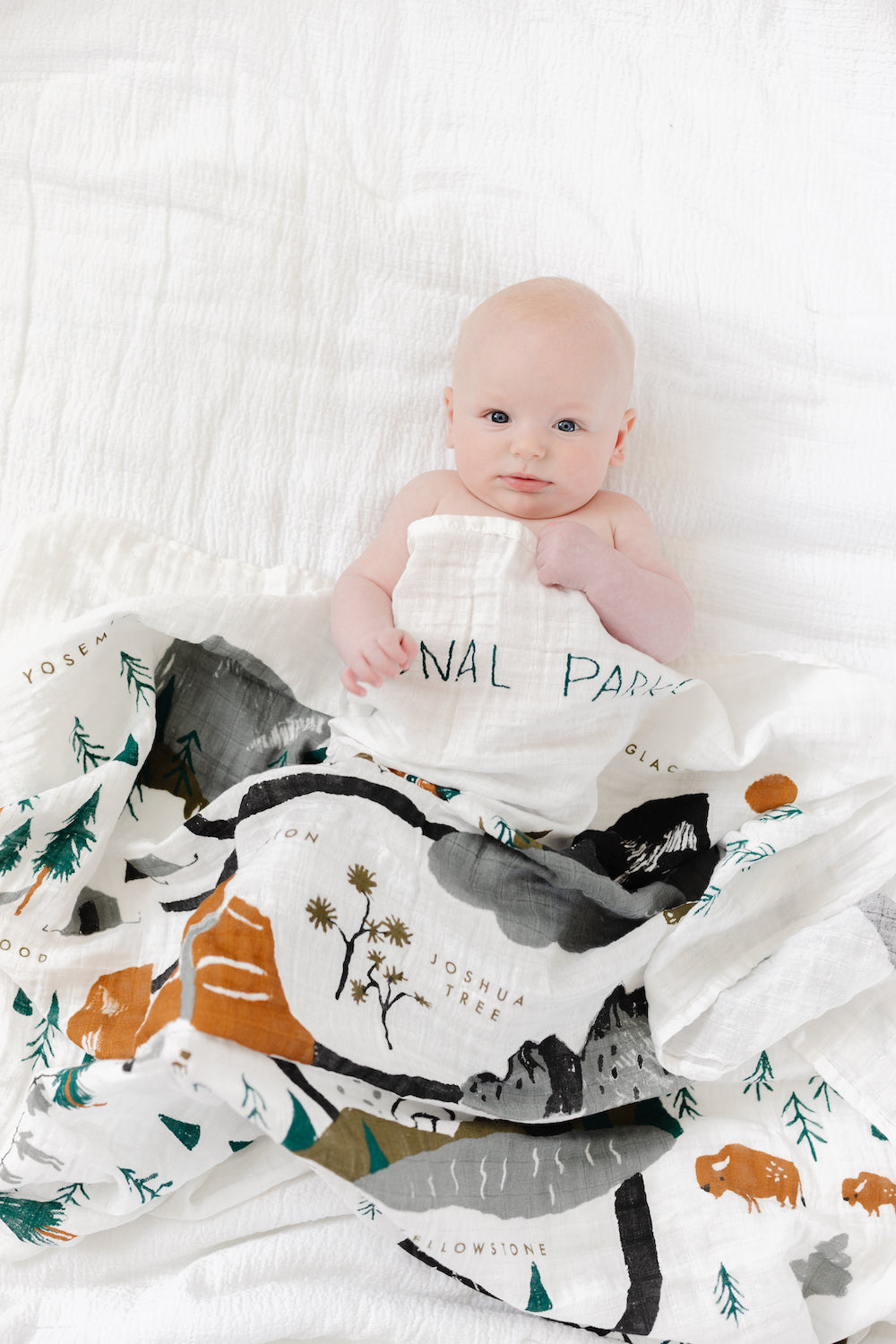 National Parks Swaddle