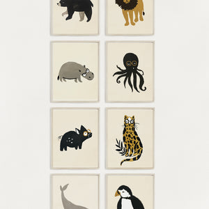 Zoology 8 Pack - 5x7
