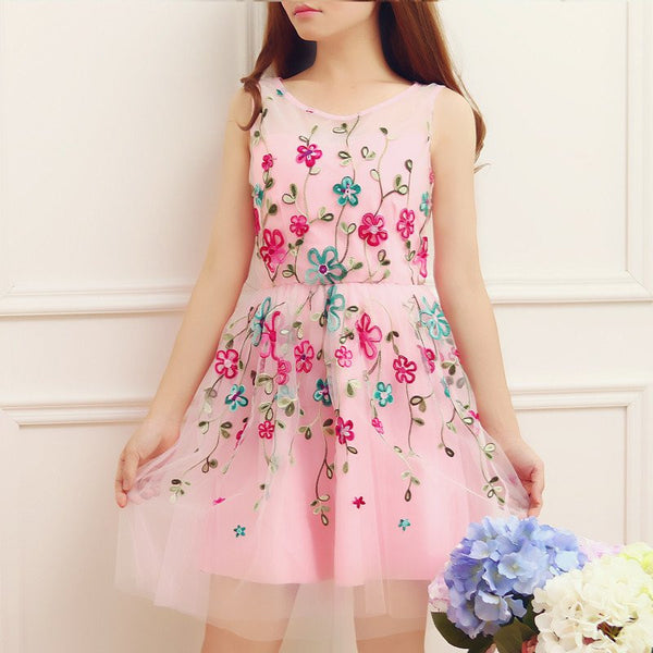 Sweet Lace Embroidery Tutu Dress