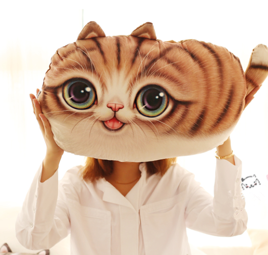 Cute Kawaii Cat Hold Pillow