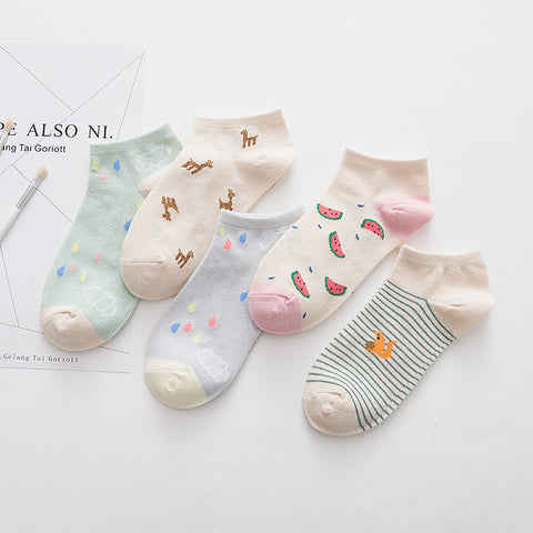 5 Pair of Lovely Cartoon Socks KW1711126