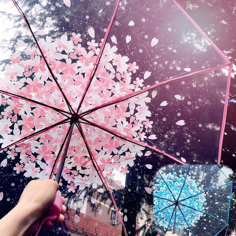 Blue/Pink Sakura Sun-Rain 3 Fold Clear Umbrella KW167530