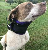 BHS Neck Collars with Bib