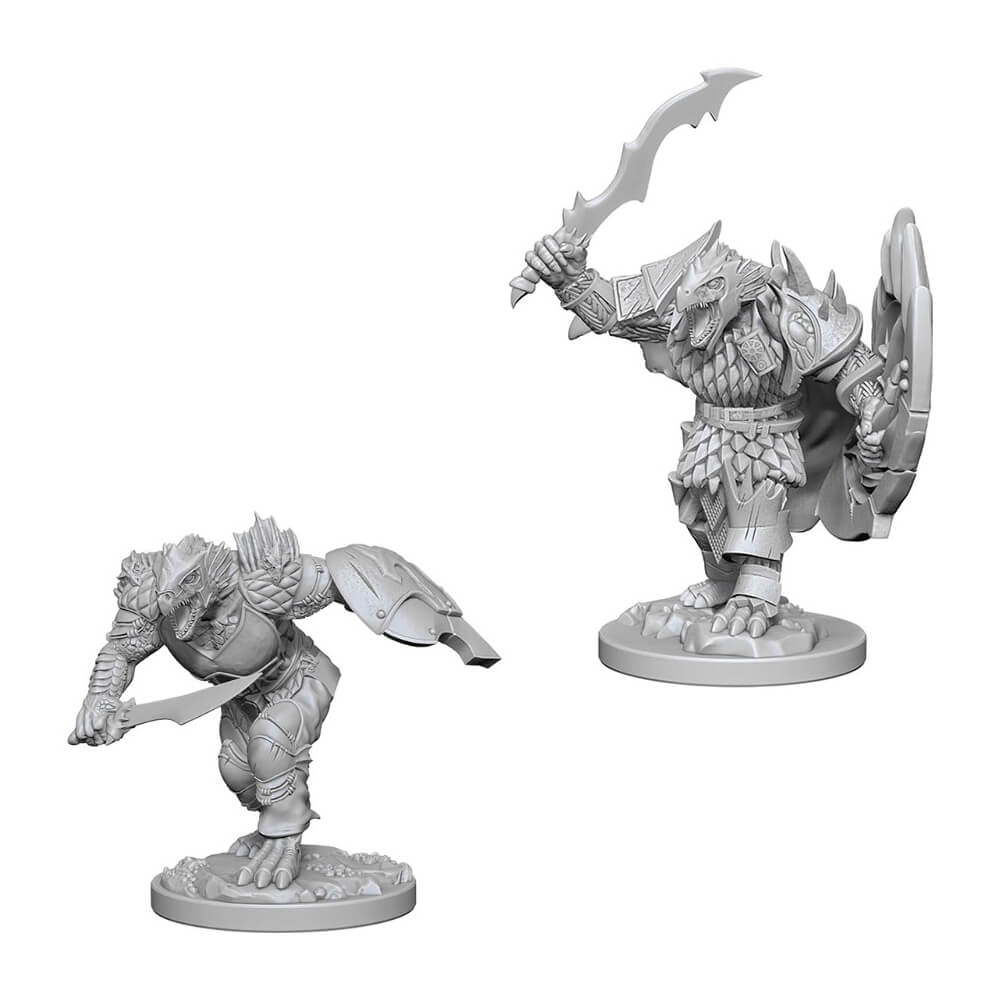 D&D Minis - Dragonborn Male Fighter - Imaginary Adventures