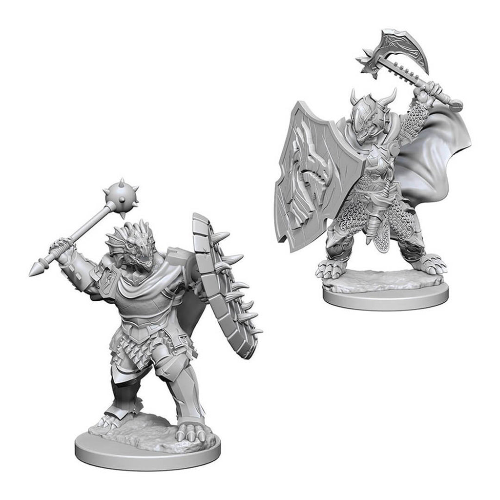 D&D Minis - Dragonborn Male Paladin - Imaginary Adventures
