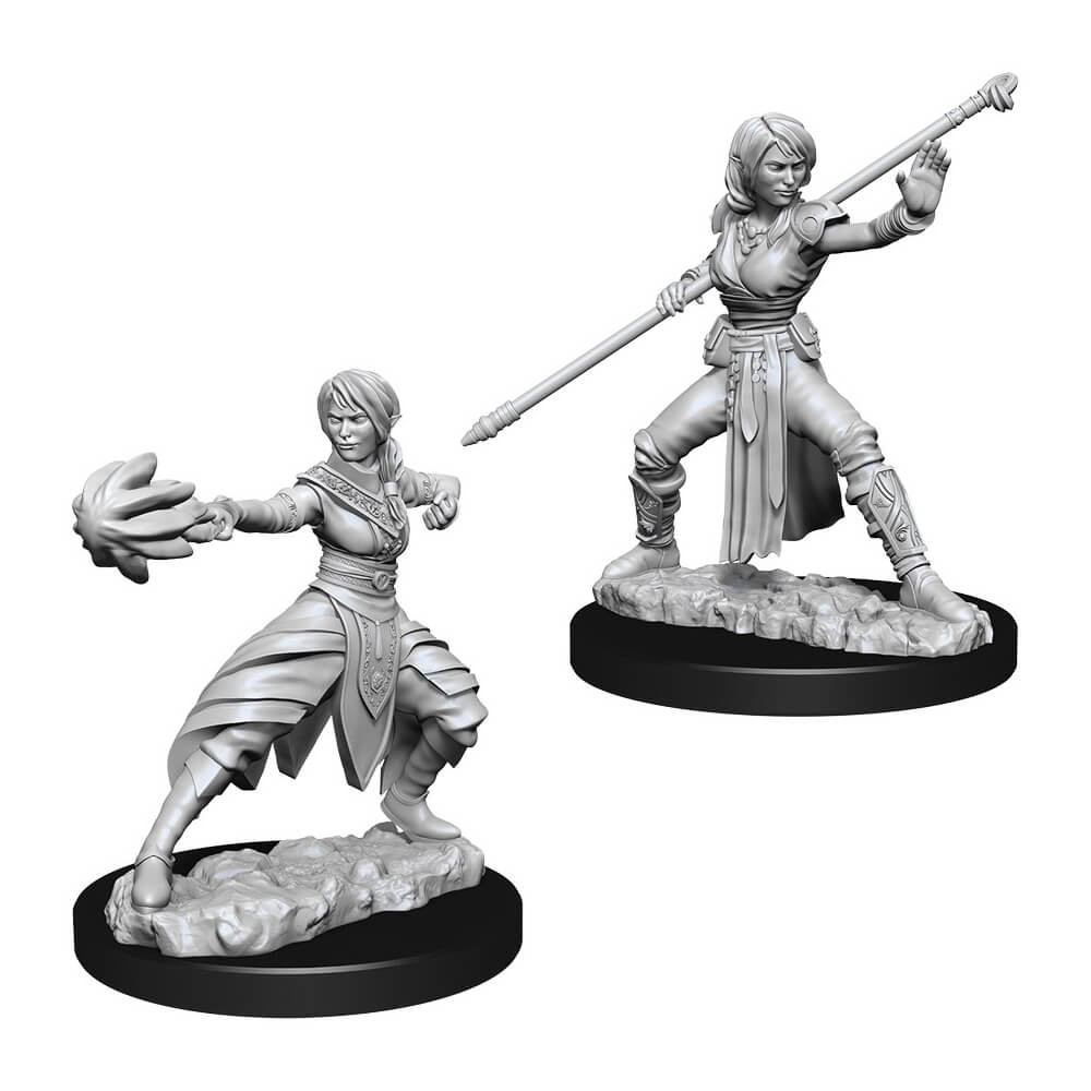D&D Minis - Female Half-Elf Monk - Imaginary Adventures