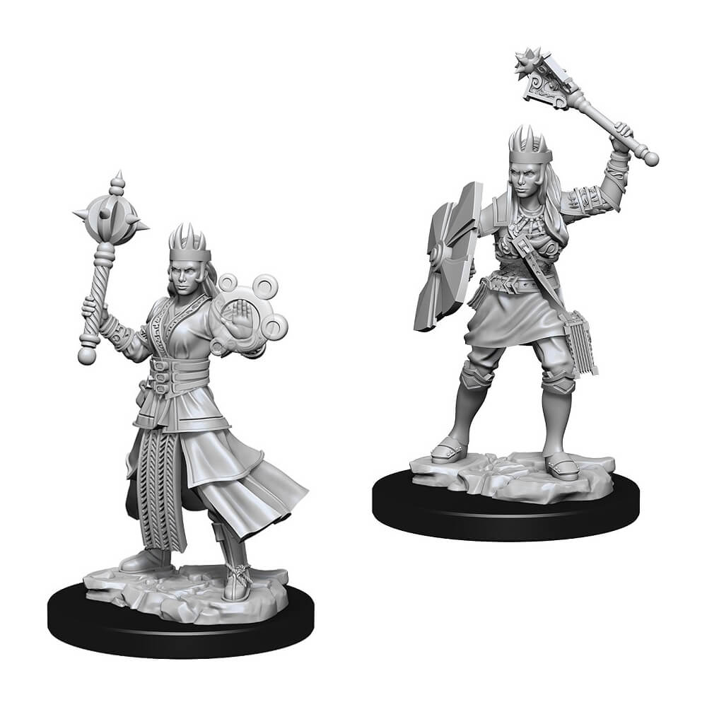 D&D Minis - Human Female Cleric - Imaginary Adventures